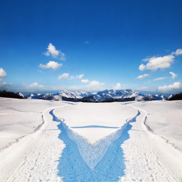 Araucaria Hotel & Spa **** - Pistes ski La Plagne